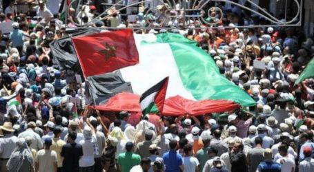 الشباب ينظمون وقفة تضامنة بالرفع العلم الفلسطيني