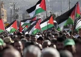 """فلسطين ترحب بتوصيت """"حقوق الإنسان"""" الأممي على قرارات لصالحها"""