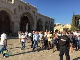 مجموعات كبيرة من المستوطنين تقتحم باحات الأقصى المبارك