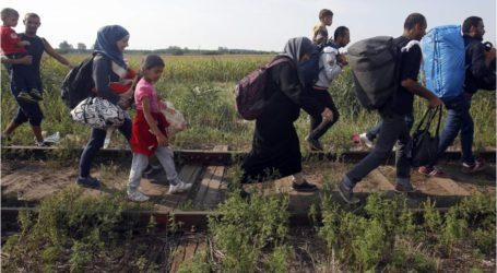 تجاوز عدد النازحين الفلسطينيين من سوريا إلى أوروبا 85 ألف