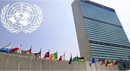 مجلس الأمن الدولي يدعو لدعم الشباب في بناء السلام والأمن