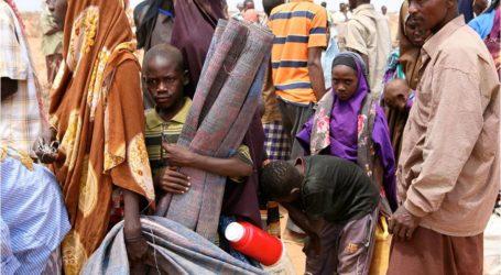 الصين تعتزم زيادة مساعداتها للاجئين في كينيا