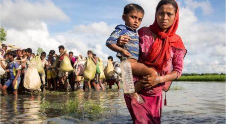 الأمم المتحدة وبنغلاديش يعتزمان نقل 41 ألف لاجئ روهنغي من مخيماتهم