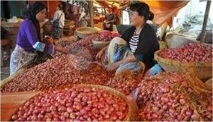 وزير الزراعة يعلن فتح السوق الإندونيسى لمحصول الثوم المصرى