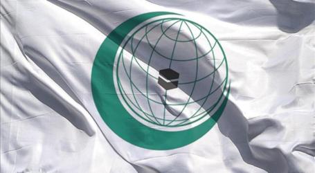 التعاون الإسلامي تدين استمرار العنف في إفريقيا الوسطى