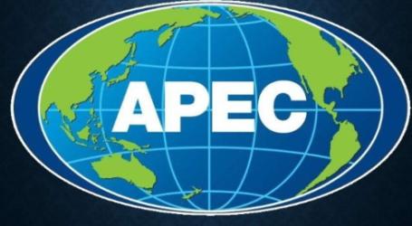 سيشارك الرئيس جوكو ويدودو في قمة أبيك في بابوا غينيا الجديدة