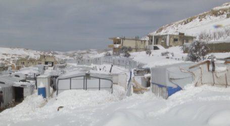 """عرسال اللبنانية: وضع النازحين السوريين بعد عاصفة """"نورما"""" سيئ جدا (مقابلة)"""