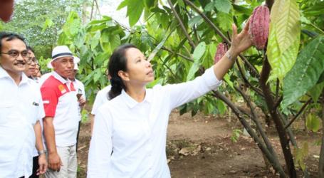 الوزيرة ريني : يتعين على الشركات المملوكة للدولة أن تتحد لتعزيز القدرة التنافسية