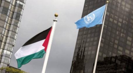 """التصويت لصالح 6 قرارات تخص """"فلسطين"""" بالأمم المتحدة"""