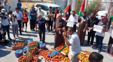 مزارعون بغزة يتلفون محاصيلهم رفضا للشروط الإسرائيلية لتصديرها
